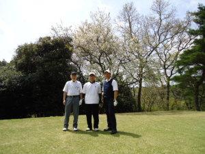 源氏山 桜とかつお 春きたる。