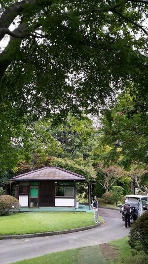 ゴルフ倶楽部成田ハイツリー / ゴルフ会員権の千葉ゴルフ会