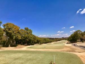 カメリアヒルズカントリークラブ / ゴルフ会員権の千葉ゴルフ会