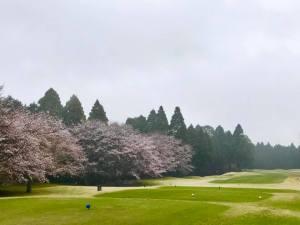 東千葉カントリークラブの月例杯 / ゴルフ会員権の千葉ゴルフ会