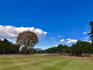千葉カントリークラブ / ゴルフ会員権の千葉ゴルフ会